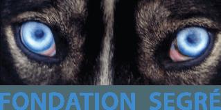 Fondation Segré